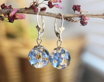 Real Forget me not Terrarium earrings Forget me not jewelry Resin flower jewelry Forget me not earrings Dried flower earring Sterling silver