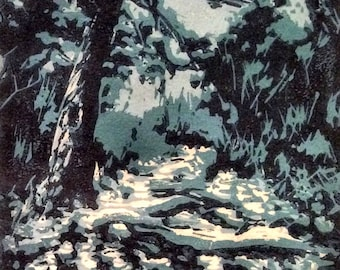 Walk in the Woods - Winter
