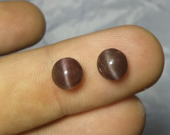 3.90 Ct Natural Brown Cats-eyes Scapolite Shape Round Cabochon 7x7 Mm Fine Chatoyancy_207