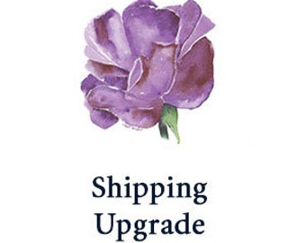 CUSTOM LISTING for Priority Mail Shipping Upgrade