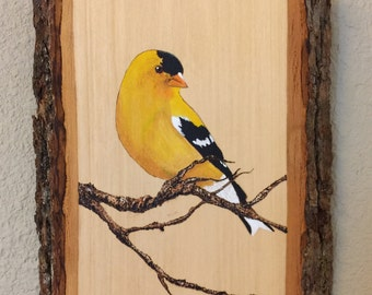 American Goldfinch Pyrography