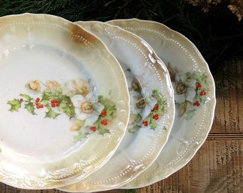 Gorgeous Antique Bavarian Salad Plates Set of 3 Holiday Porcelain Plates Tea Party, Wedding, Dessert Plates, Cottage Style, French Shabb