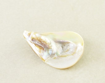 Shell Pendant, Teardrop Pendant, 30mm Champagne Shell Drop, One