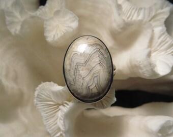 Crazy Lace Agate Jasper Ring Size 9.25