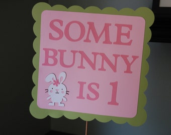 Bunny Birthday Sign, Bunny Birthday, Some Bunny, Birthday Sign, Rabbit Birthday, Some Bunny is One