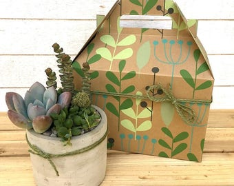 Succulent Arrangement-Concrete Planter-Mini Planter-DIY Succulent Gift-Home Decor-Gift for Her-Gift for Mom-Gardener Gift-Succulent Plants