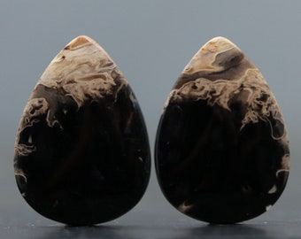 Fossil Root Fossilized Pair Natural Polished Matching Gemstones for Earring Tutorials Lessons Bezel Setting and Wire Wrapping (V3740)