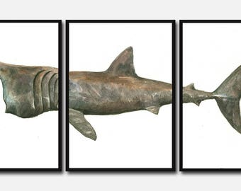 PRINT- Basking shark triptic  poster  - basking shark print Large size shark fish Poster print  painting watercolor- Art Print by Juan Bosco