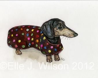 Dachshund Dog Art Print