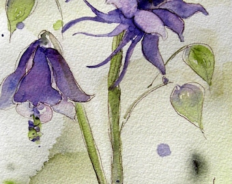 Columbine aquarel botanische kunst Print, 8 x 10 Columbine Print
