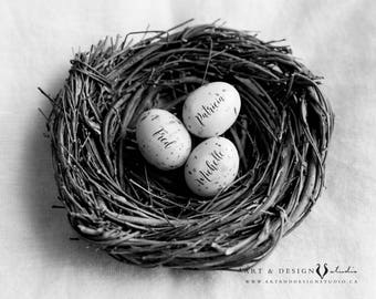 Personalized Gift Mothers, Family Nest Print, Personalised Mom Gift, Egg in Nest Print, Gift for Mom, Birthday Gift Mother, Gifts from Kids