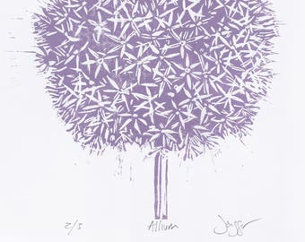 Allium 3