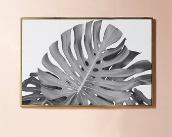 Plant Print, Botanical Print, Monstera Leaf Print , Tropical Leaf Print Art Black and White Print Photography INSTANT DOWNLOAD PRINTABLE Art
