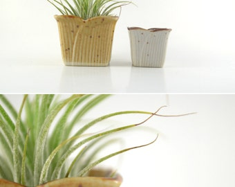 2 Mini Planters, Vintage Pottery Planters, Tiny Flower Pots, Speckled Stoneware Planter, Air Plant Holder, Cactus Planters, Small Stoneware