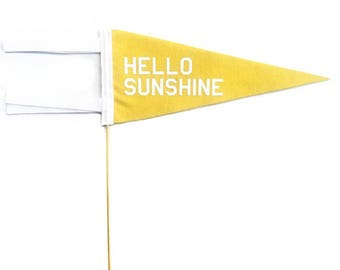 Mini Pennant - Hello Sunshine