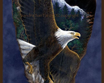 Bald Eagle Soaring Feather Print