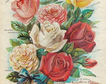 Digital Flower Paper Ad