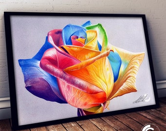 Rainbow Rose Likited Edition Print
