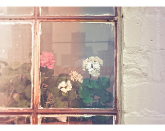 Flower Photography 5x7 Print Abandoned Building Photography Urban Exploration Photography Detroit Art Rustic Decor Rustic Photography Pink