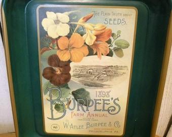 Vintage Burpee Seed Nasturiums Advertising Tray collector series No Scratches ECS RDT SVFTeam FVGTEAM