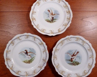 3 different vintage OE&G Royal Austria game bird  wall or cabinet plates