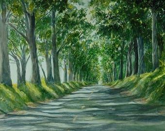 Kauai Tree Tunnel Painting Art Print