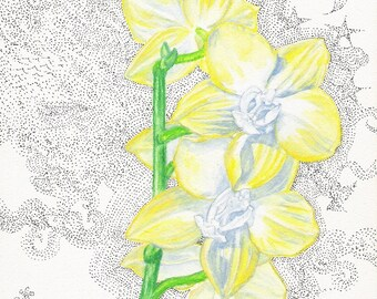 Large Yellow Orchid Print