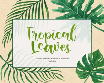 Tropical Leaves Watercolor clip art/Flower clip art/Hand Painted clip art for commercial use