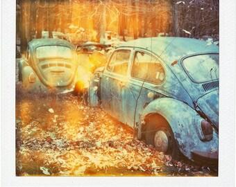 Polaroid Print - VW Graveyard