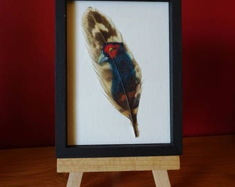 original Feather art trading card /Pheasant