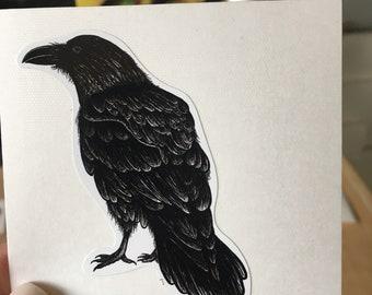 Raven Sticker/Decal