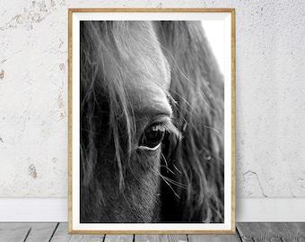 Horse Home Decor, Horse Eye Photo, Horse Printable, Black and White, Black White Print, Black White Wall Art, Digital Download, Icelandic