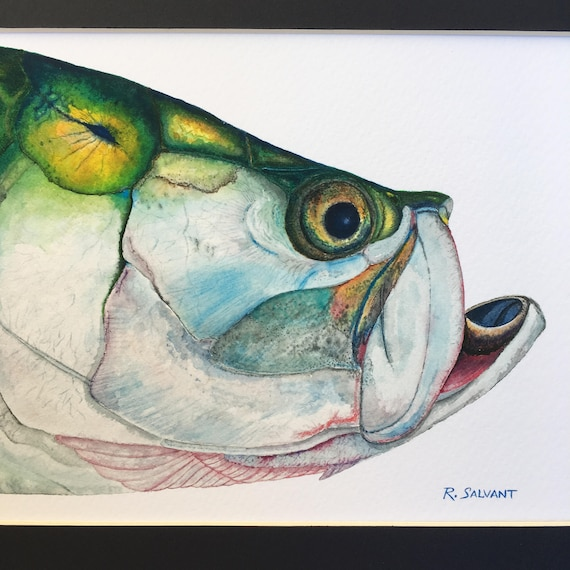 Tarpon Watercolor Print on Heavy Weight Cold Press Paper With Mat 8 x 10