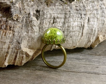 Lime green ring, Moss terrarium ring, Clear glass ball ring, Ecofriendly ring, Real plant ring, Botanical ring, Wearable nature jewelry WJ