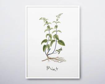 Mint Printable, Mint Plant, Mint Print, Mint Wall Art, Mint Herb, Mint Watercolor,Herb Prints,Herb Garden,Kitchen Wall Art, INSTANT DOWNLOAD