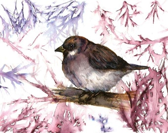"Italian  Art  Original Watercolor ""Sparrowt"" Italy Animal Woodland   Italian Landscape & Scenic"