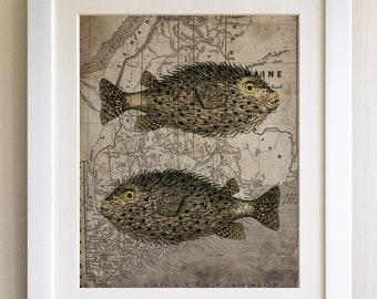 """FRAMED Vintage Map Fish Print, 12""""x10"""" Black or White Frame, Modern Art"""