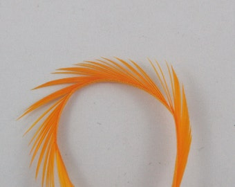 Feathers gold Goose Biots 4 GBD-22 craft feathers fly tying feathers flytying