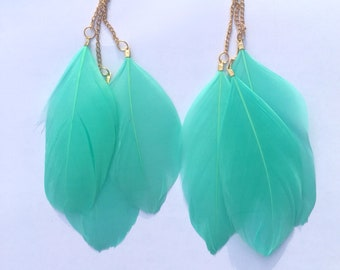 Turquoise Feather Earings