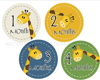 Baby Month Stickers Baby Milestone Stickers Monthly Stickers Giraffes Baby Stickers Baby Shower Gift