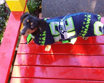 Seahawk winter walking Harness with snap lock Custom Sizes in stock ready to ship last 4