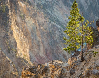 Landscape photography. Colors of the Grand Canyon of Yellowstone. Color print.
