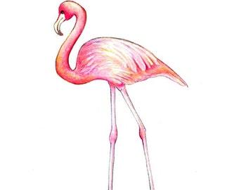 Pink Flamingo Art Etsy