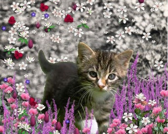 Emma in Flowers I - Gray Tabby Kitten ACEO, Art Card