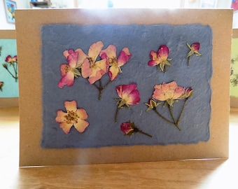 Real Flower, Roses, Blank Greetings Card. Pressed Flower Card. Blank inside for your own message. Hand-made card using home-grown flowers.