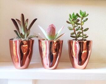 Copper ceramic planters, succulent planters, cactus pot, ceramic cups, rustic modern accent