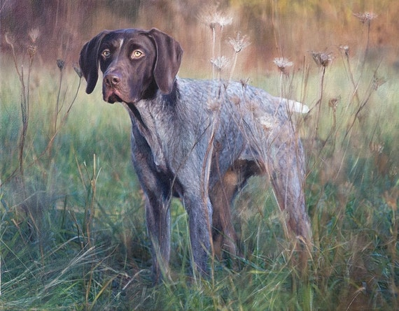 CUSTOM PET PORTRAIT - Oil Painting - Photo to Painting - Dog Portrait - German Short Haired Pointer