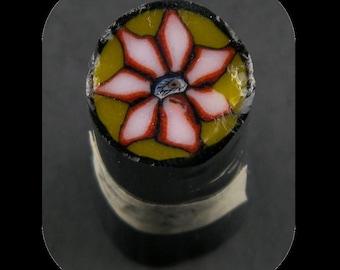 Flower Eye by Greg Chase Murrine Boro Cane 12 grams - 145 Q