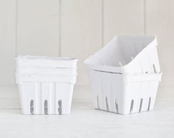 Berry Baskets - 5 White Paper Pulp Boxes
