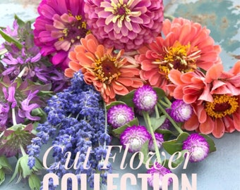 Cutting Garden Flower Seeds, 5 Flower Seed Varieties, Easy to Grow Cut Flowers, Great for Container Gardens or Mother's Day Gift